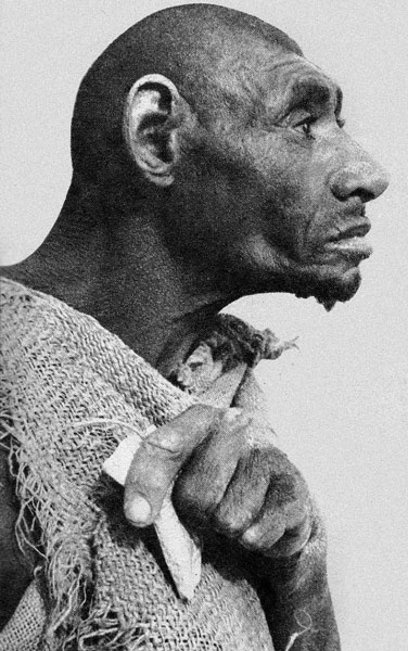 Was Azzo Bassou the missing link?