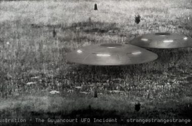 Illustration of two flying saucers side by side floating over a field