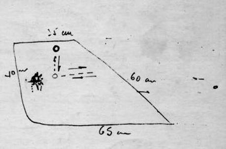 VASP Flight 169 Pilot draw of the UFO he witnessed